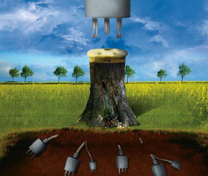 Yeşil enerjii hayata başlamanın tam zamanı!