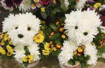 çiçek sanatından bir örnek