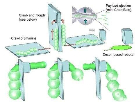kimyasal robot (chembot)