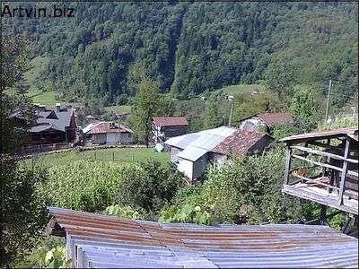camili köyü