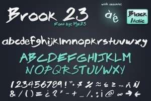 Brook 23